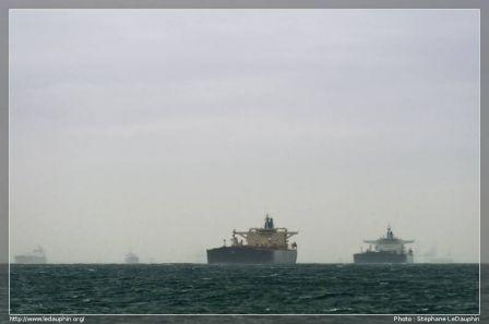 Pétroliers en attente dans le Golf de Fos